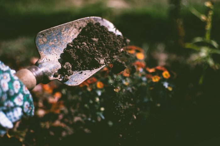 creating a compost