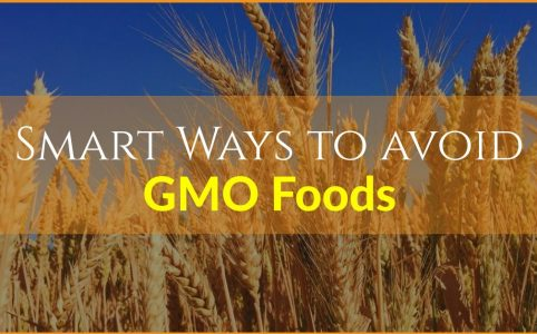 more ways to avoid gmo foods